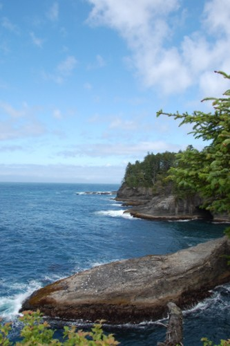 Exploring the Olympic Coast with Kids 7